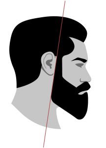 Bart Konturen vertikale Linie